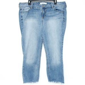 Torrid Womens Jeans Cut Offs Blue 18 L2